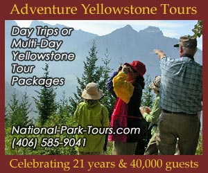 Adventure Yellowstone Year-Round Park Tours - Hands-on excursions into Yellowstone National Park to see animals up close by hiking or skiing into their natural environs. Ideal for family, tour or international groups, fluent in English & Japanese. Kids love our interactive program. Celebrating 21 years and 40,000 guests.