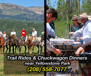 Yellowstone Horses - trail rides on private ranch - Family-style mountain & meadow horseback rides suitable for ages 6 and up. Great friendly horses, knowledgeable and safe guides, reasonable rates and fantastic trails near Yellowstone's west entrance. Select from morning, mid-day or afternoon rides, with Cowboy Cookout option for supper.