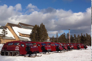 Yellowstone Alpen Guides - Winter Park Tours