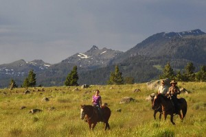Flying Pig Horseback - trail rides in the Park