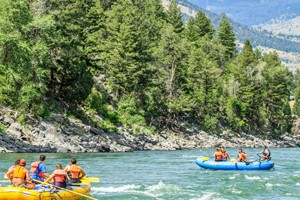 Flying Pig Rafting - float trips near Yellowstone :: Two-hour scenic float trips on the Yellowstone River leaving 5 times daily from Gardiner MT. Also available, 1/2-day horseback rides, BBQ cookouts, hikes & more.