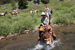 Yellowstone Mountain Guides - horse pack trips :: Multi-day backcountry & hiking trips into Yellowstone Park. Select from 2-10 day duration trips. Wildlife photos tours, great fishing, or just relax. 30+ years experience.