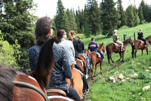 Horseback Rides with Creekside Trail Rides