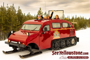 Yellowstone Alpen Guides - Winter Park Tours