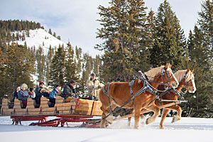 320 Ranch Sleigh Ride & Appetizers - in Big Sky MT