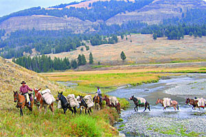 Horse Riding Pack & Fishing Trips near Yellowstone