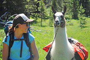 Wildland Trekking - Llama Pack Trips into YNP