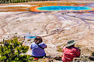 See Yellowstone | Summer Park Tours