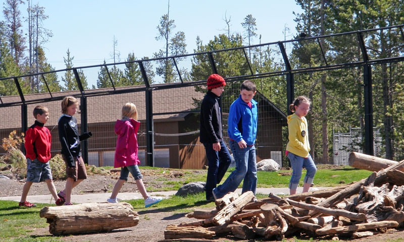 Kids exploring the Grizzly and Wolf Discovery Center in West Yellowstone