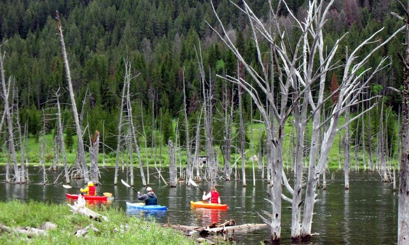 Kayaking West Yellowstone Montana Quake Lake