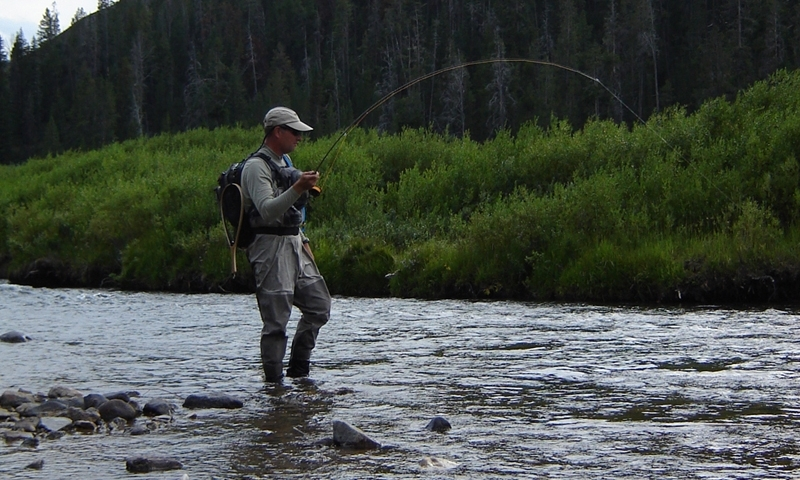 Fishing the Gallatin River in Montana