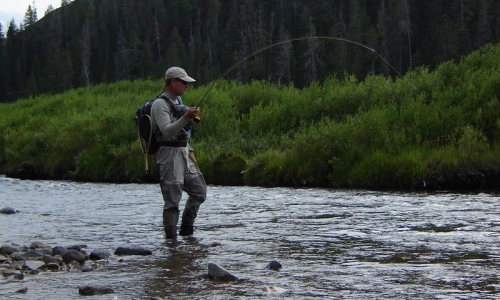 Gallatin river montana fly fishing camping boating for Bozeman mt fly fishing