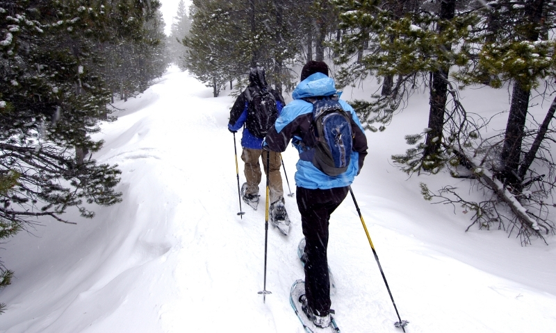 Snowshoeing Cross Country Skiing Yellowstone