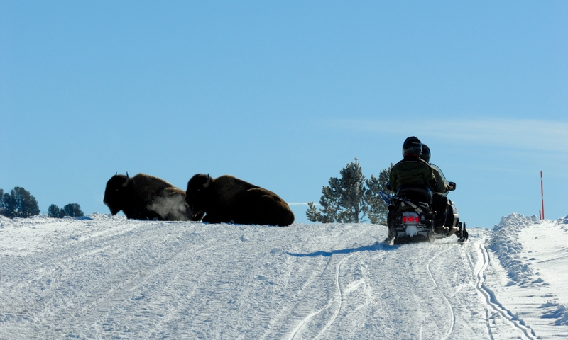 West Yellowstone Montana Winter Vacations Amp Activities