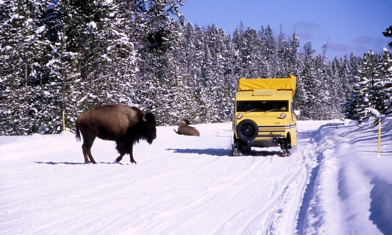 West Yellowstone Montana Winter Vacations & Activities ...