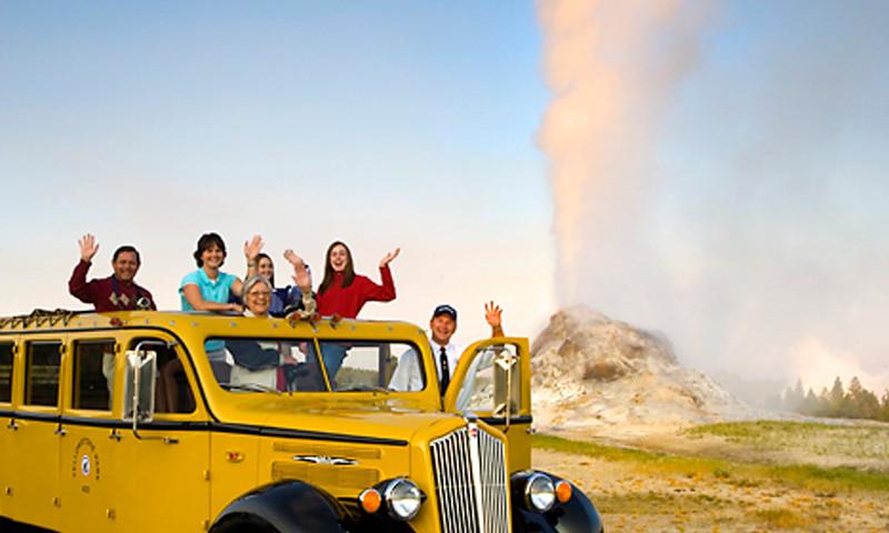 Yellow Bus Tour