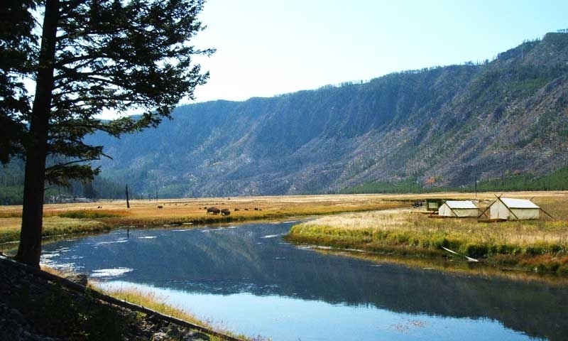 Yellowstone Camping