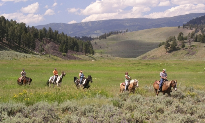 West Yellowstone Montana Horse Pack Trips Amp Llama Trekking