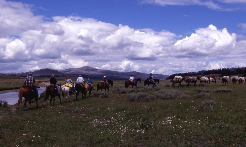 Horseback Riding Yellowstone Pack Trip