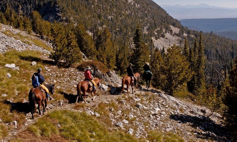 Horseback Riding Bitteroot Mountains Montana