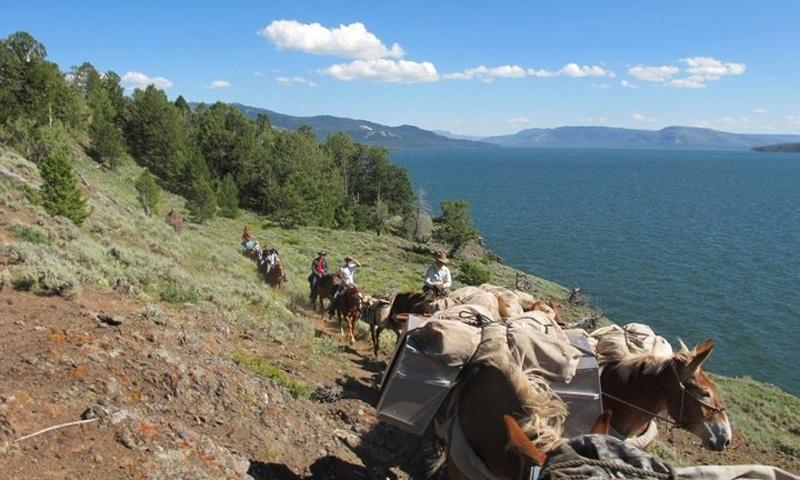 Horse Pack Trip along Thorofare Creak in Yellowstone