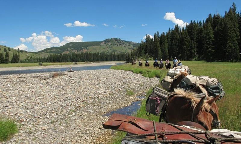 West Yellowstone Horse Pack Trips Thorofare Creek