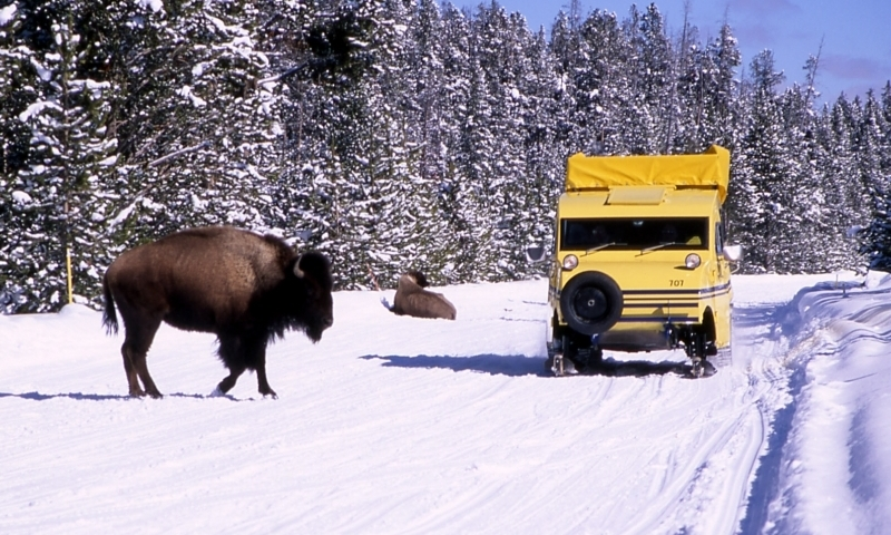 West Yellowstone Snowcoach Tours