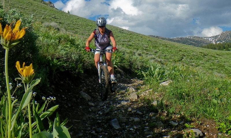 West Yellowstone Mountain Biking